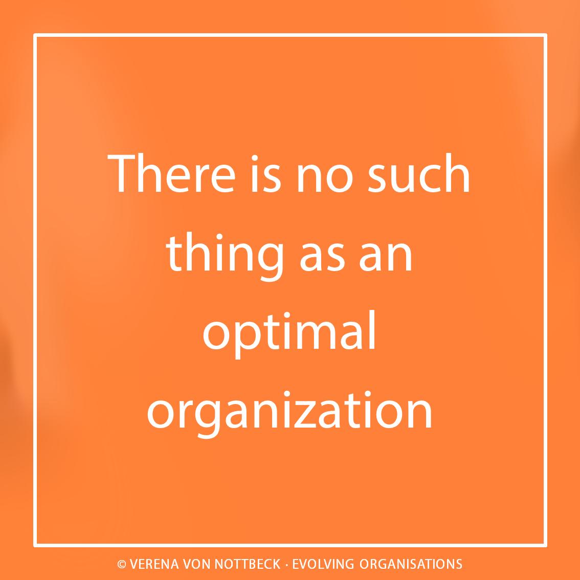 Es gibt keine optimale Organisation.